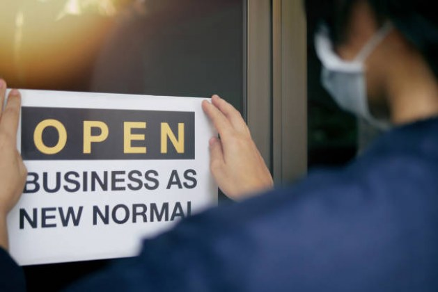 Bankruptcy and Reorganization for Small Businesses After Covid-19.