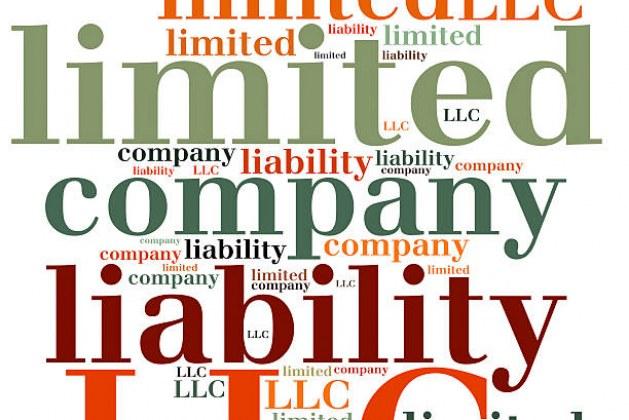 LLC (Limited Liability Company) Basics
